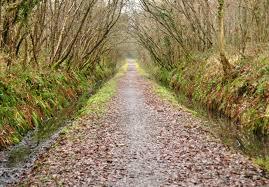 Tarka trail image