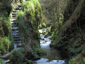 Lydford_gorge-devon-moorparks-holiday-cottage