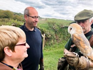 Fly a hawk north devon hawk walk